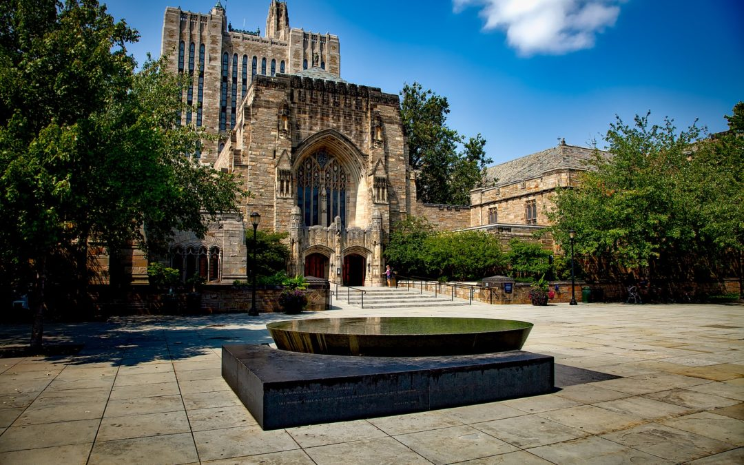 Ivy League Acceptance Rates and How You Can Still Get In